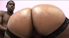 Fat ebony lady in fishnet stockings can't get enough of a black rod banging her twat