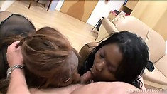Two horny black whores take turns stroking and sucking a white prick