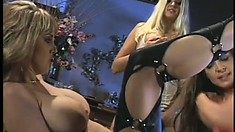 Monique Dane meets a couple of girlfriends for some pussy pleasing