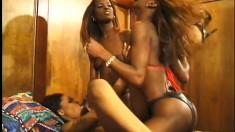 Ebony beauties Caramel, Chocolate and Mocha enjoy some lesbian loving