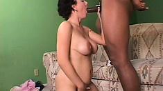 Shameful busty bitch lifts her legs up and gets pricked by ebony lad