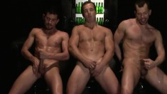 Three sexy dudes have a blazing threesome and give hot blowjobs