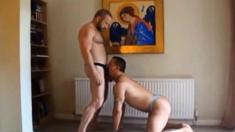 Amateur Muscle Bears
